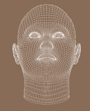 Full-face wireframe render young woman Stock Photo