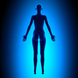 Full Female Body - Back View - Blue concept Royalty Free Stock Images