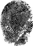 Full Fingerprint. Hi Detail vector fingerprint in black and white Royalty Free Stock Photo