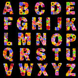 Full Floral Alphabet Isolated on Black- Letters A to Z Royalty Free Stock Image