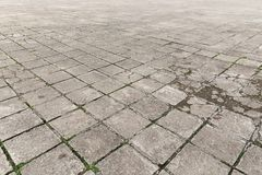 Old paving stones outdoors Royalty Free Stock Photo