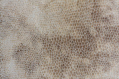 Full frame background of suede like fabric Stock Image