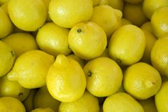 Full frame citron background Royalty Free Stock Image