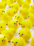 Full Frame Of Easter Chicks Stock Photos