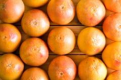 Full frame of fresh whole grapefruits Royalty Free Stock Photos