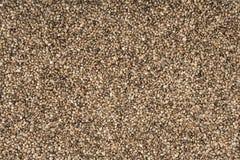 Full frame hemp seed background Stock Images