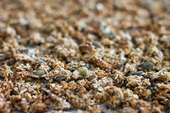 Full-frame of home baked granola stock images
