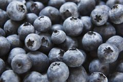 Full frame image of blueberries Stock Photo