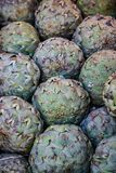 Full frame image of pile. Of artichokes royalty free stock images