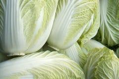 Full frame lettuce background Royalty Free Stock Photo