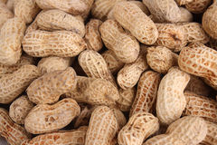 Full Frame Peanut Stock Photography