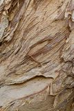 Textured Wood Royalty Free Stock Photography