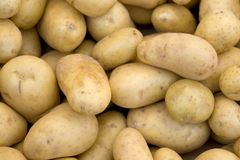 Full frame potatoe background Royalty Free Stock Photo