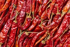 full frame of red dried chili peppers royalty free stock photography