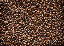 Full frame of roasted coffee beans. Stock Image