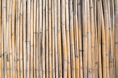 Full Frame Shot Of Bamboo Wall. Background Stock Photography