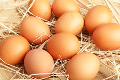 Full-frame shot of brown chicken eggs arranged in straw Royalty Free Stock Photos