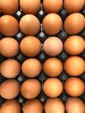 Full Frame Shot Of Eggs In Cartoon royalty free stock image