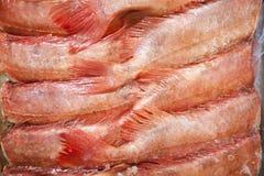 Full frame shot of freshly caught red fishes Stock Photos
