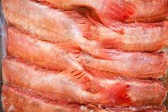 Full frame shot of freshly caught red fishes Stock Images