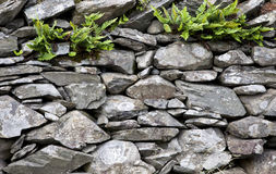Full frame shot of stone wall Royalty Free Stock Images
