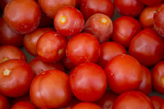 Full frame of tomatoes at a French Market Royalty Free Stock Image
