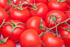 Full frame tomatos Stock Image