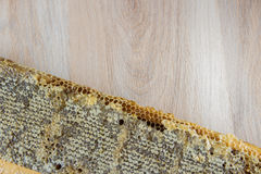 Full of fresh delicious healthy honey honeycomb in a wooden fram Royalty Free Stock Image