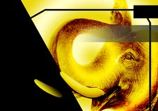 Elephant on a book cover. Animal theme. Full front and fourth book cover, by format 17,4x26,6 cm with abundance margins included. Yellow tones and black color Royalty Free Stock Photography