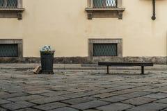 Full garbage bin in milano city center stock image