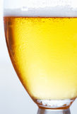 Full glass of beer Stock Photos