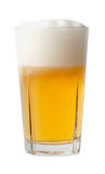 Full glass of beer. Stock Images