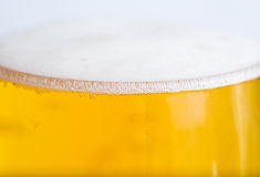Full glass with beer and foam Stock Photography