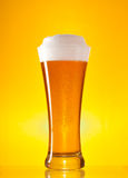 Full glass of beer with froth Royalty Free Stock Photography