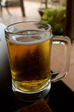 Full glass of fresh beer Royalty Free Stock Images