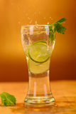 Full glass of fresh cool tonic with lime fruits Stock Photography