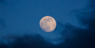 Full glowing moon closeup on  blue sky Stock Photos