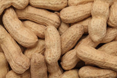 Full groundnuts. Background Stock Image