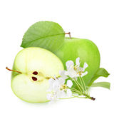 Green apples with leaf and flowers Royalty Free Stock Image
