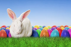 Full Happy Easter. With sky background Stock Photo