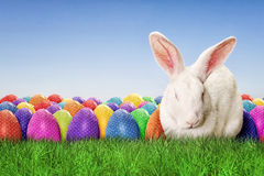 Full Happy Easter. With sky background Stock Image