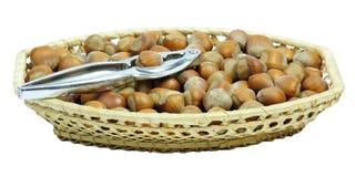 Full hazelnuts basket Stock Image
