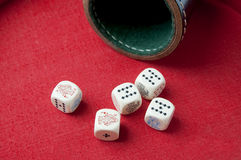 Full house with poker-dice. Full house thrown with poker-dice and dice-box on a red dice-ring Royalty Free Stock Images