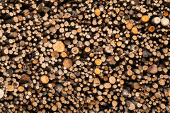 Full image of cut wood pile, texture Stock Photo