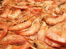Full image of shrimp frying on a restaurant grill. Grilled seafood snack appetizer dinner healthy roasted shellfish mediterranean meal dish black red gourmet royalty free stock photo