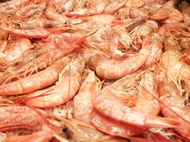 Full image of shrimp frying on a restaurant grill. Grilled seafood snack appetizer dinner healthy roasted shellfish mediterranean meal dish black red gourmet stock photo