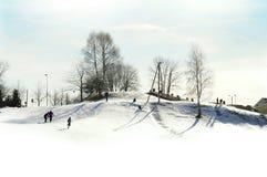 Full of joy winter Royalty Free Stock Images