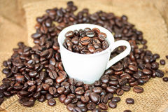 full kaffekopp Royaltyfri Fotografi