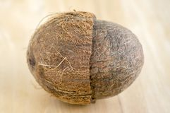 Full kokosnöt med nötskal på träbambotabellen royaltyfri foto