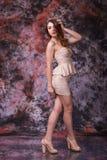 Full längdmodemodell i ursnygg klänning för gränsrosfärg royaltyfri foto